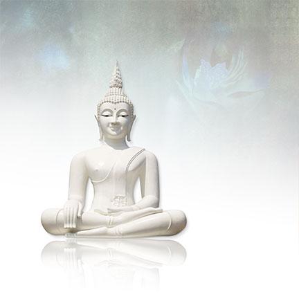 Boeddha etherischeolie is heel grondend en verbind je met alles wat er is