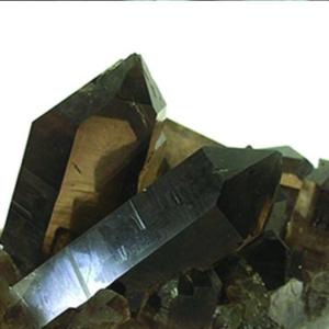 Rookkwarts etherische olie zorgt voor focus en concentratie!