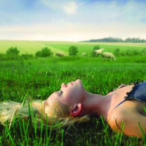 Schaapje 14 natuurzuiver hulpmiddel als je niet kunt slapen!