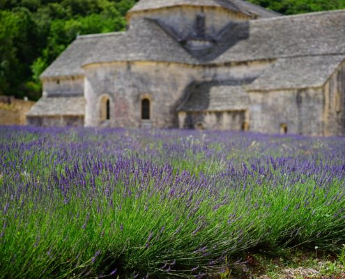 Lavendel olie Frankrijk